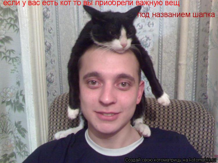 Котоматрица: если у вас есть кот то вы приобрели важную вещ под названием шапка