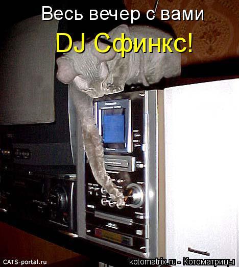 Котоматрица: Весь вечер с вами DJ Сфинкс!