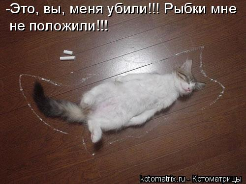 Котоматрица: -Это, вы, меня убили!!! Рыбки мне не положили!!!