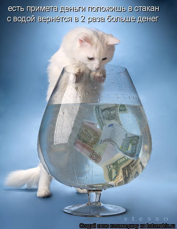 Котоматрица: есть примета деньги положишь в стакан с водой вернётся в 2 раза больше денег