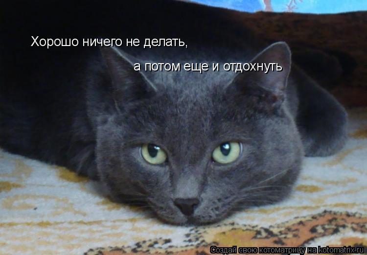 Котоматрица: Хорошо ничего не делать, а потом еще и отдохнуть