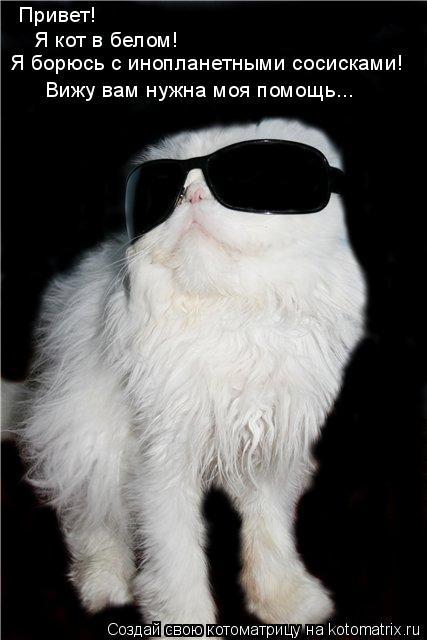 Котоматрица: Привет! Я кот в белом! Я борюсь с инопланетными сосисками! Вижу вам нужна моя помощь...