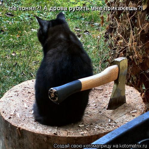 Котоматрица: Не понял?! А дрова рубить мне прикажешь?!.