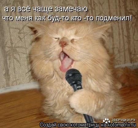 Котоматрица: а я всё чаще замечаю что меня как буд-то кто -то подменил!