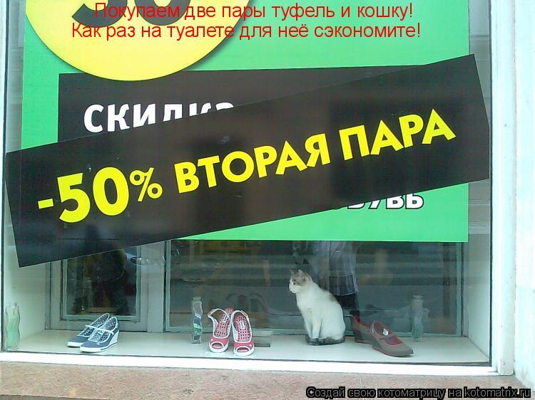 Котоматрица: Покупаем две пары туфель и кошку! Как раз на туалете для неё сэкономите!