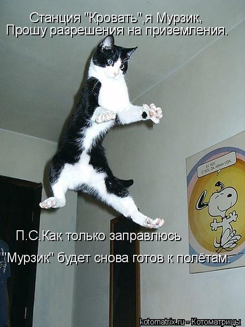 """Котоматрица: Станция """"Кровать"""",я Мурзик , Прошу разрешения на приземления. П.С.Как только заправлюсь """"Мурзик"""" будет снова готов к полётам."""