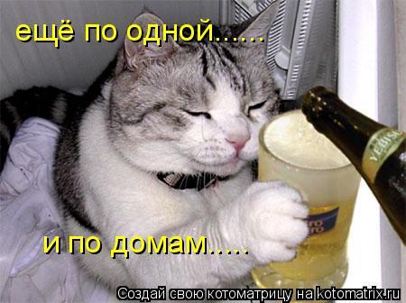 Котоматрица: ещё по одной......  и по домам.....