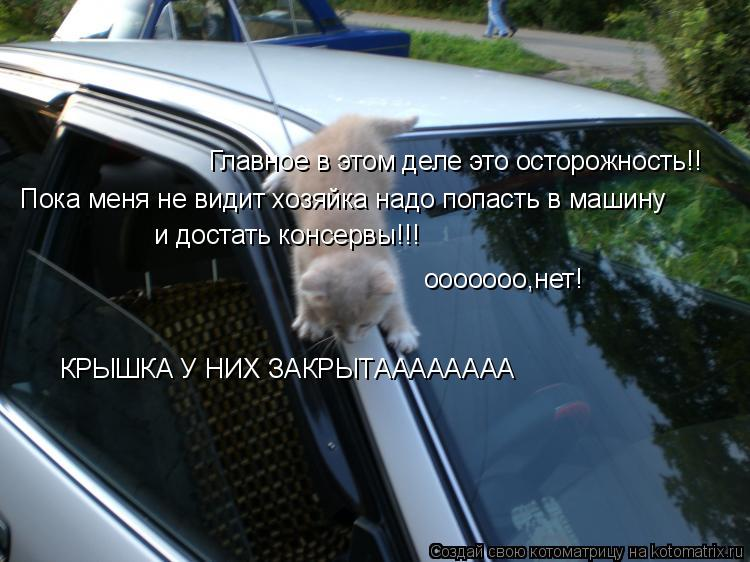 Котоматрица: Главное в этом деле это осторожность!! Пока меня не видит хозяйка надо попасть в машину и достать консервы!!! ооооооо,нет! КРЫШКА У НИХ ЗАКРЫТ