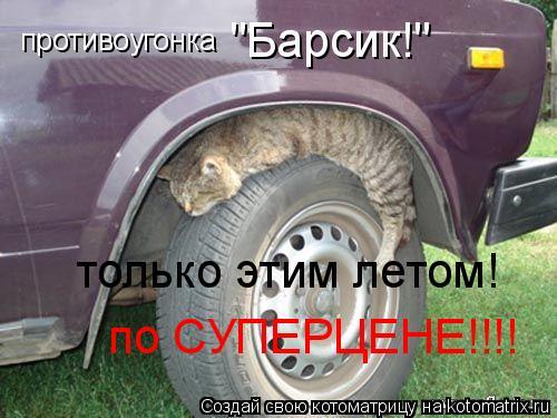 """Котоматрица: противоугонка """"Барсик!""""  только этим летом! по СУПЕРЦЕНЕ!!!!"""