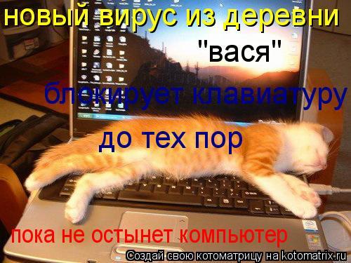 """Котоматрица: новый вирус из деревни """"вася"""" блокирует клавиатуру до тех пор пока не остынет компьютер"""