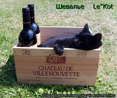 "Котоматрица: Шевалье    Le""Kot"
