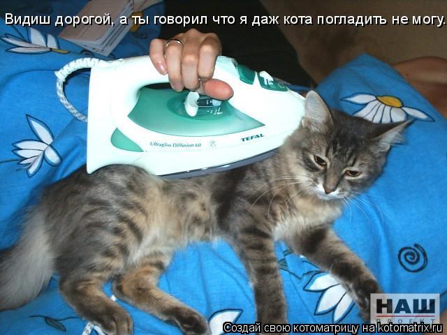 Котоматрица: Видиш дорогой, а ты говорил что я даж кота погладить не могу...