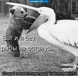 Котоматрица: Вот и я без рыбы не останусь.