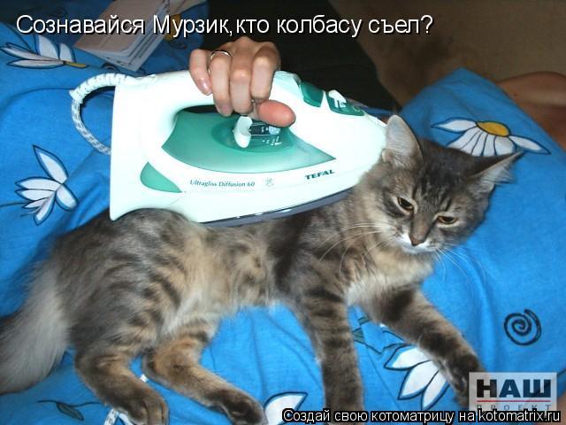 Котоматрица: Сознавайся Мурзик,кто колбасу съел?