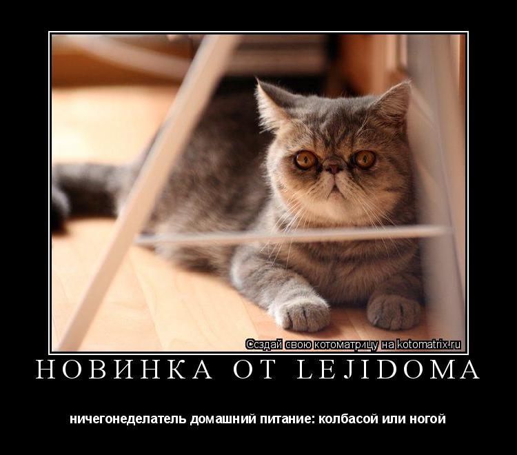Котоматрица: новинка от lejidoma ничегонеделатель домашний питание: колбасой или ногой