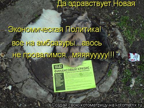 Котоматрица: Да здравствует Новая  Экономическая Политика! все на амбразуры...авось   не провалимся...мяяяууууу!!!