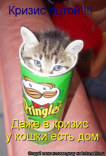 Котоматрица: Кризис ацтой!!!! Даже в кризис у кошки есть дом