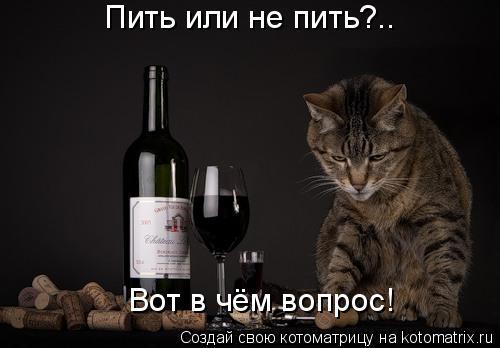Котоматрица: Пить или не пить?.. Вот в чём вопрос!