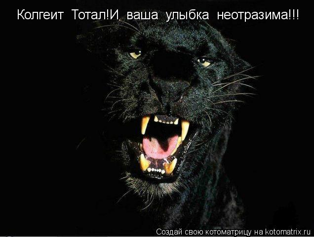 Котоматрица: Колгеит  Тотал!И  ваша  улыбка  неотразима!!!