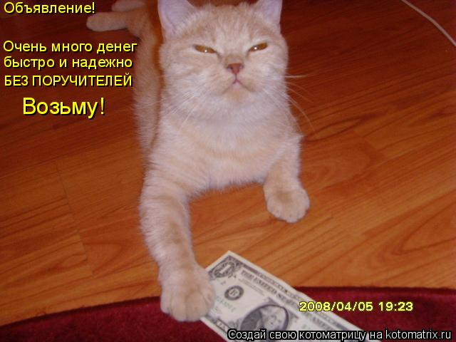 Котоматрица: Объявление! Очень много денег  БЕЗ ПОРУЧИТЕЛЕЙ быстро и надежно Возьму!