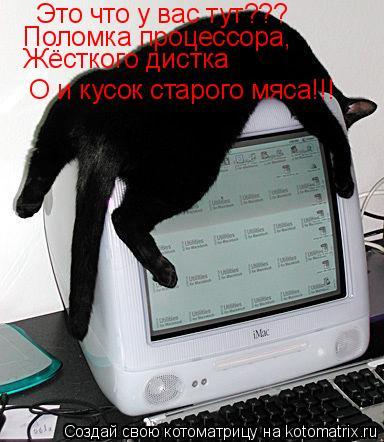 Котоматрица: Это что у вас тут??? Поломка процессора, Жёсткого дистка О и кусок старого мяса!!!