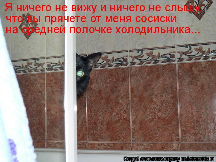 Котоматрица: Я ничего не вижу и ничего не слышу, что вы прячете от меня сосиски на средней полочке холодильника...