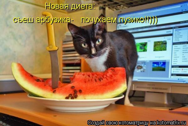 Котоматрица: Новая диета: съеш арбузика- почухаем пузико!!)))
