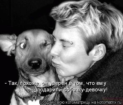 Котоматрица: - Так, похоже, он уверен в том, что ему   подарили собачку-девочку!