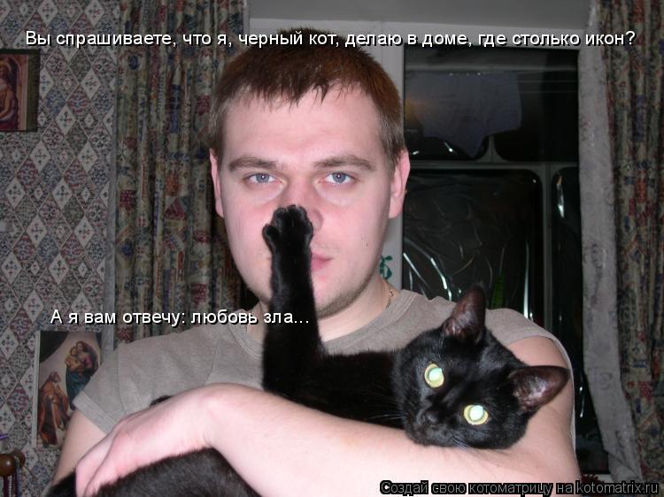 Котоматрица: Вы спрашиваете, что я, черный кот, делаю в доме, где столько икон? А я вам отвечу: любовь зла...