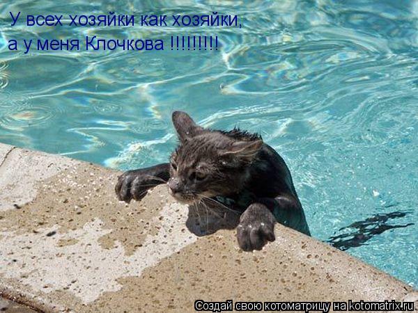 Котоматрица: У всех хозяйки как хозяйки, а у меня Клочкова !!!!!!!!!