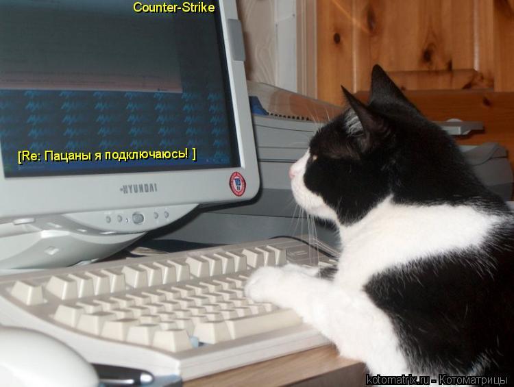 Котоматрица: Counter-Strike [Re: Пацаны я подключаюсь! ] [Re: Пацаны я подключаюсь! ]