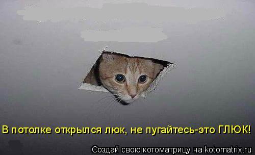 Котоматрица: В потолке открылся люк, не пугайтесь-это ГЛЮК!