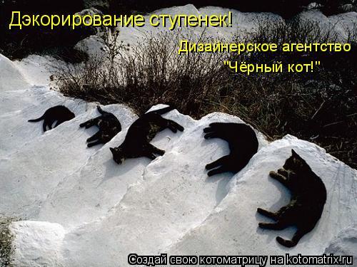 """Котоматрица: Дэкорирование ступенек! Дизайнерское агентство """"Чёрный кот!"""""""