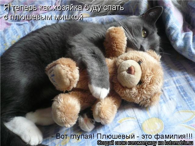 Котоматрица: Я теперь как хозяйка буду спать с плюшевым мишкой - Вот глупая! Плюшевый - это фамилия!!!