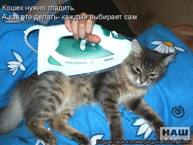 Котоматрица: Кошек нужно гладить.  А как это делать- каждый выбирает сам