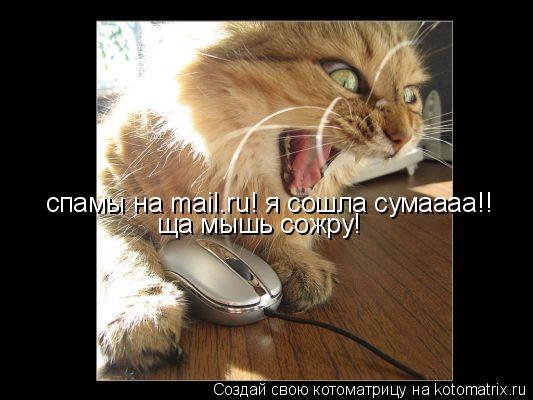 Котоматрица: спамы на mail.ru! я сошла сумаааа!! ща мышь сожру!
