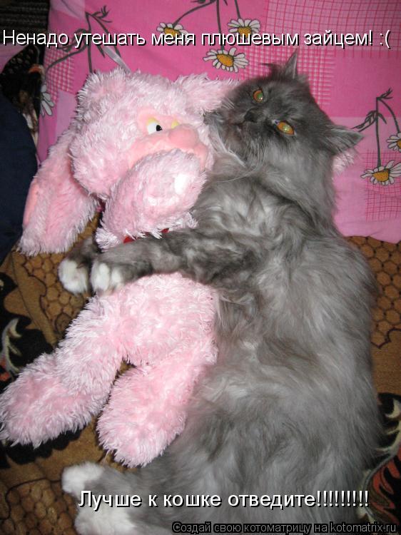 Котоматрица: Ненадо утешать меня плюшевым зайцем! :(  Лучше к кошке отведите!!!!!!!!!