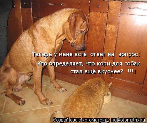 Котоматрица: Теперь у меня есть  ответ на  вопрос: Кто определяет, что корм для собак   стал ещё вкуснее?  !!!!