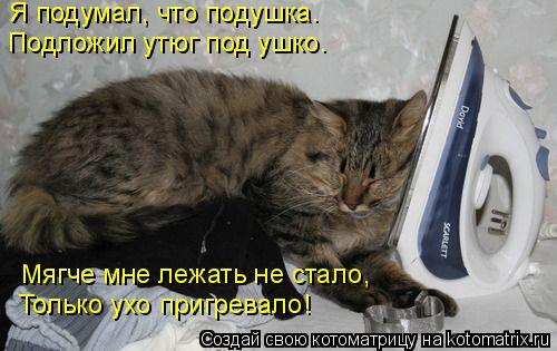 Котоматрица: Я подумал, что подушка. Подложил утюг под ушко. Мягче мне лежать не стало, Только ухо пригревало!