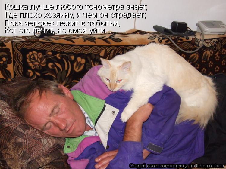 Котоматрица: Кошка лучше любого тонометра знает,  Где плохо хозяину, и чем он страдает; Пока человек лежит в забытьи,  Кот его лечит, не смея уйти...