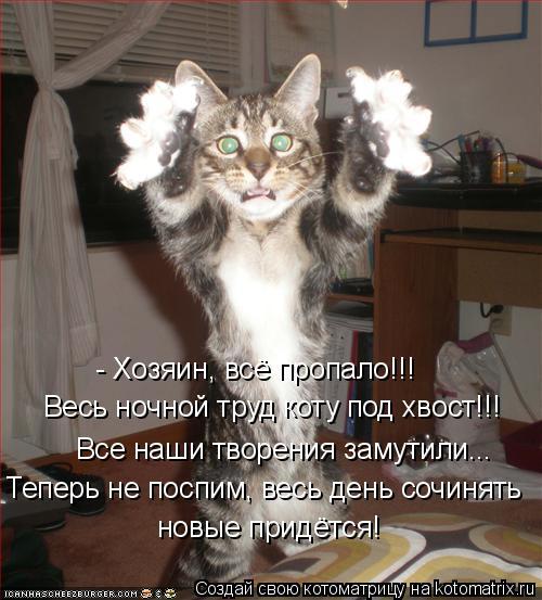 Котоматрица: - Хозяин, всё пропало!!!  Весь ночной труд коту под хвост!!! Все наши творения замутили... Теперь не поспим, весь день сочинять  новые придётся!