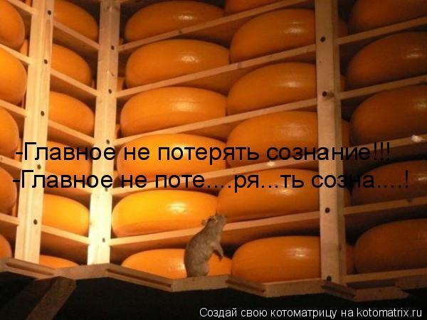 Котоматрица: -Главное не потерять сознание!!! -Главное не потерять сознание!!! -Главное не поте....ря...ть созна....!