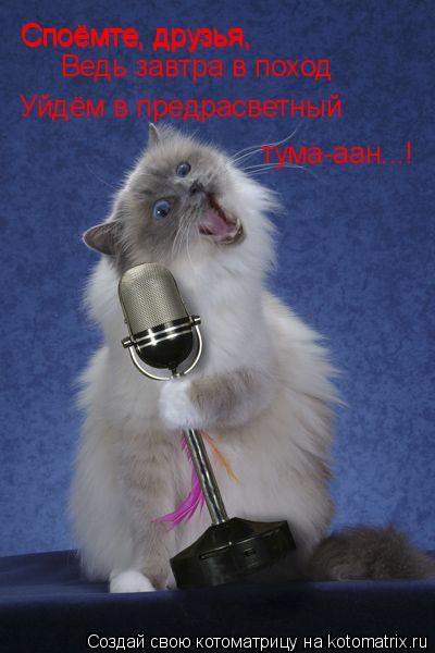 Котоматрица: Споёмте, друзья, Споёмте, друзья, Ведь завтра в поход Уйдём в предрасветный  тума-аан...!