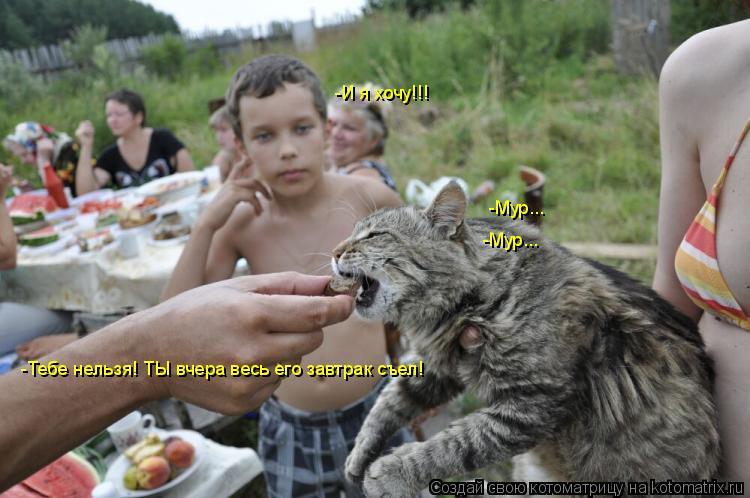Котоматрица: -И я хочу!!! -Мур... -Мур... -Тебе нельзя! ТЫ вчера весь его завтрак съел!