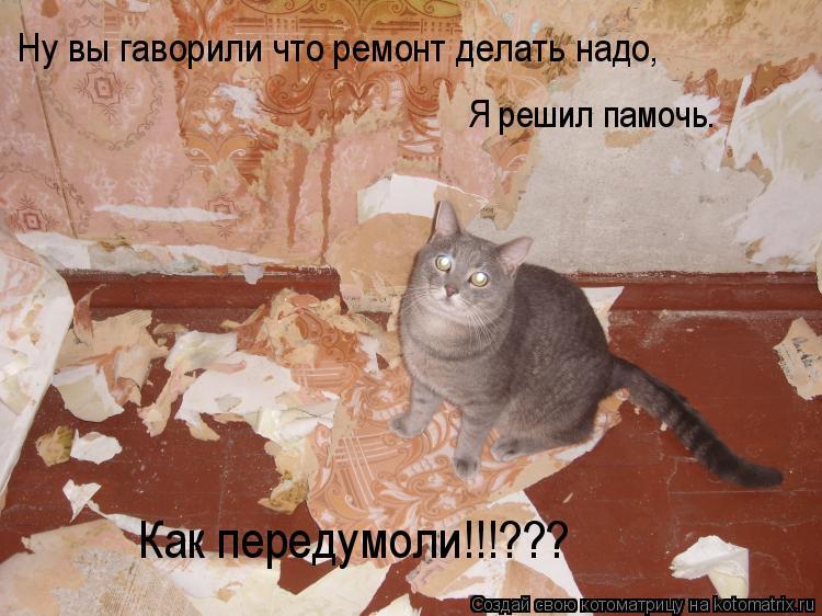Котоматрица: Ну вы гаворили что ремонт делать надо, Я решил памочь. Как передумоли!!!???