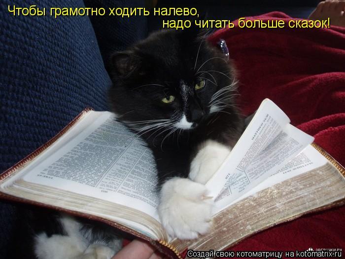 Котоматрица: Чтобы грамотно ходить налево, надо читать больше сказок!