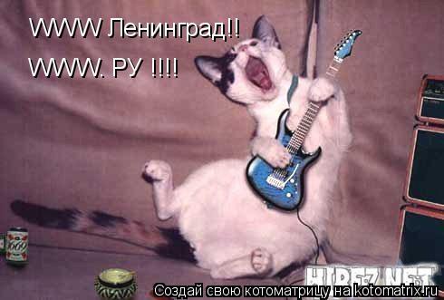 Котоматрица: WWW Ленинград!! WWW. РУ !!!!
