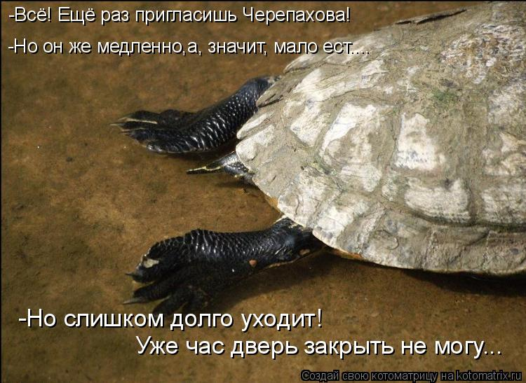 Котоматрица: -Всё! Ещё раз пригласишь Черепахова! -Но слишком долго уходит! Уже час дверь закрыть не могу... -Но он же медленно,а, значит, мало ест....