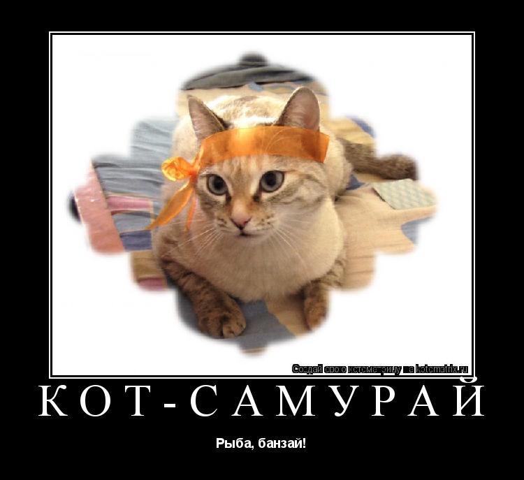 Котоматрица: Кот-самурай Рыба, банзай!