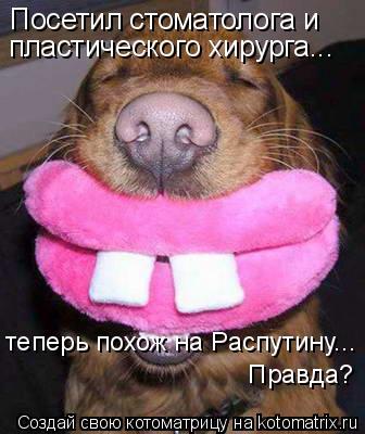 Котоматрица: Посетил стоматолога и  теперь похож на Распутину...  Правда? пластического хирурга...